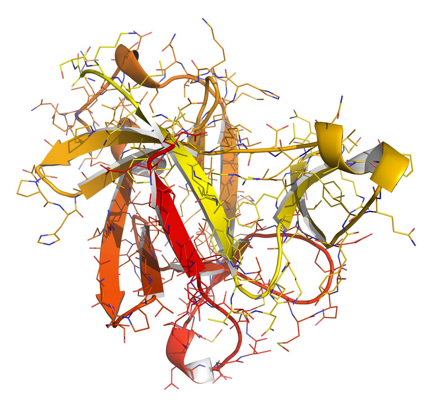 Молекула белка интерлейкина-1
