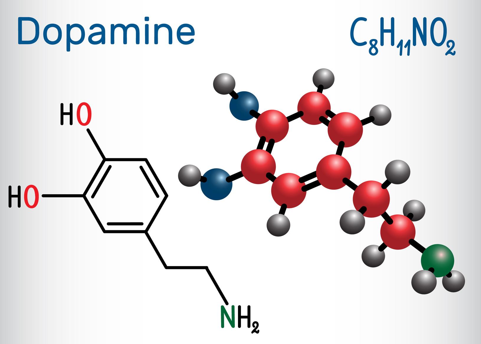 У пациентов с болезнью Паркинсона нейроны, производящие дофамин, разрушаются.