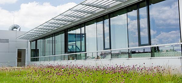 Медико-генетический центр (Мюнхен)